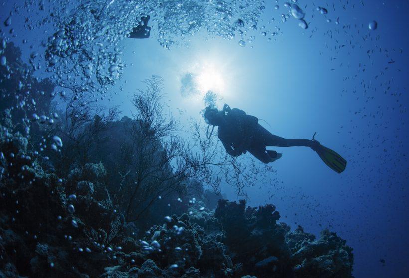 Immersioni Catania - Esplorare le Bellezze dei Fondali Marini con Istruttori Esperti.